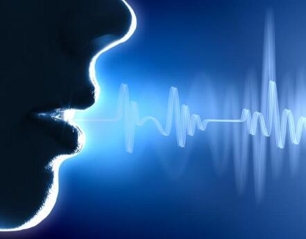人脸识别看腻了吗?语音生物识别用于考勤了解下,出差也能打卡