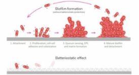 想让TPE防护设备重复使用,如何灭菌消毒成了最棘手的问题