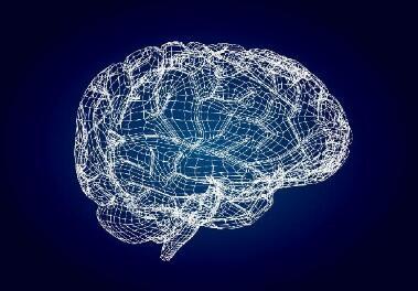 """《【奇亿平台佣金】大脑有个预设""""图谱"""",内部数据可定期清理》"""