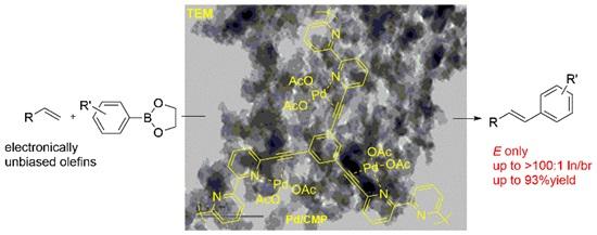 关于有机多孔材料调控高度选择性Heck反应的研究