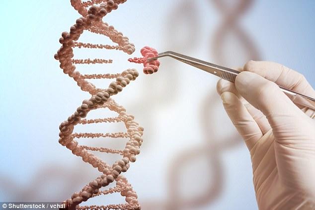 科学家通过基因编辑技术CRISPR成功消灭活体生物携带的HIV病毒
