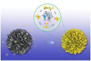 一种理想的硫复合电极基体材料