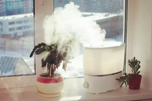 加湿器用不好,危害堪比重度雾霾?