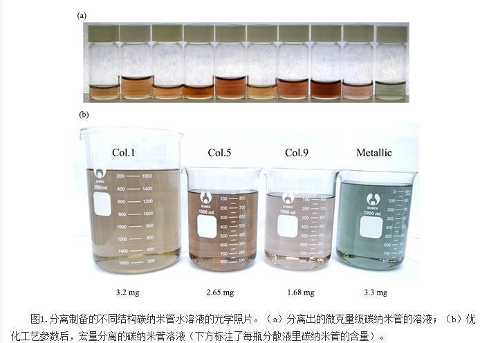 直径大于1.2nm的单一手性碳纳米管的分离方法研究
