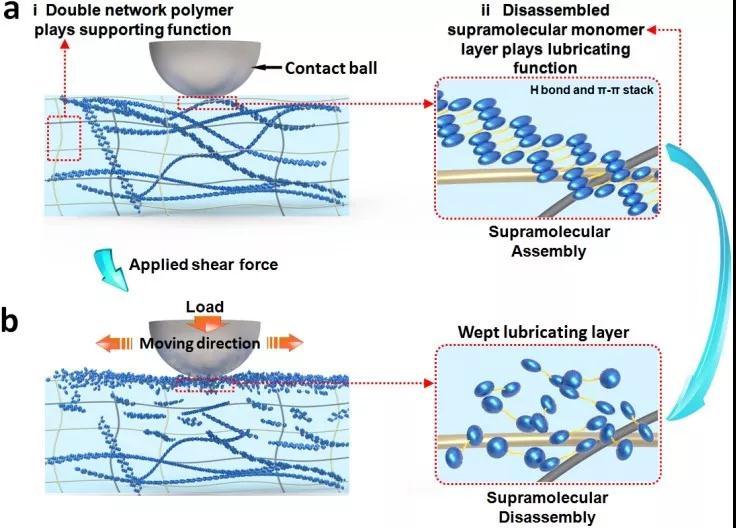 高强度超分子水凝胶的制备新方法:共价和非共价交织的超分子润滑凝胶