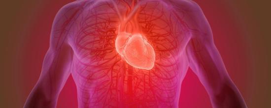 心脏补丁——将补丁直接缝入心脏,与现有的静脉和动脉相连!