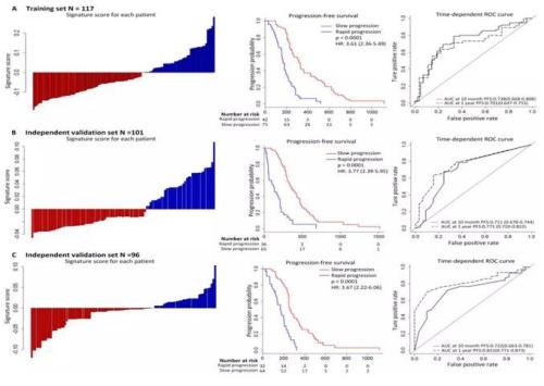 影像组学应用于四期EGFR突变型非小细胞肺癌的靶向治疗疗效评估