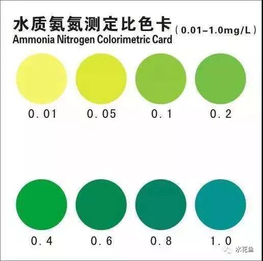 水中氨氮的降低和去除措施|池鱼氨氮中毒的识别及解救措施