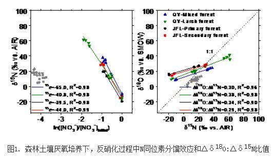 森林土壤反硝化过程中N和O同位素分馏效应研究进展
