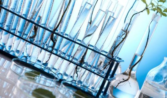 玻璃生产工艺、分类、成分特性及运输注意事项