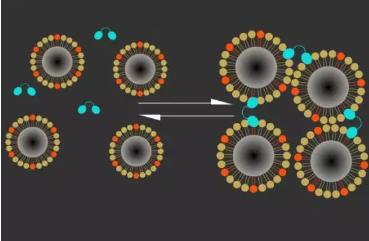 钙离子磁共振成像传感器