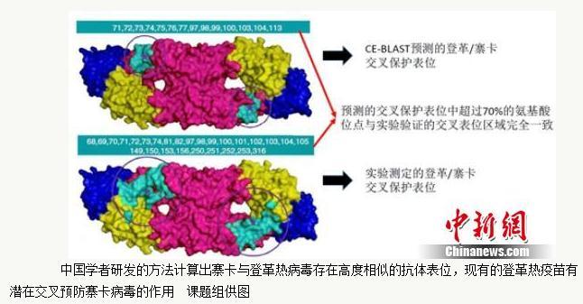 CE-BLAST:一种计算新发传染病病原体抗原性相似度的新型平台