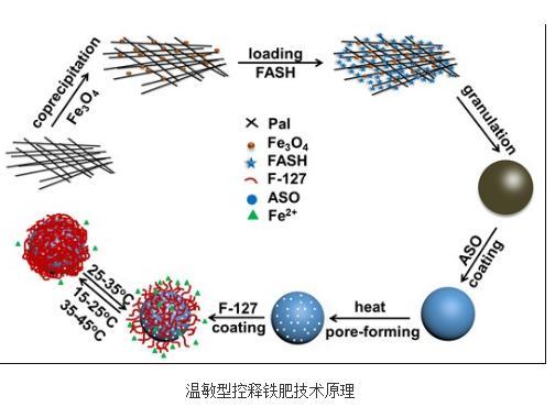 吴正岩课题组研制出温敏型控释铁肥