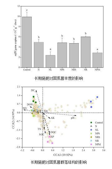 长期施肥对红壤固氮菌的影响