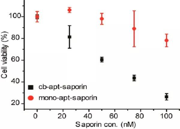一种β-环糊精修饰的圆形二阶适体(cb-apt-βCD)