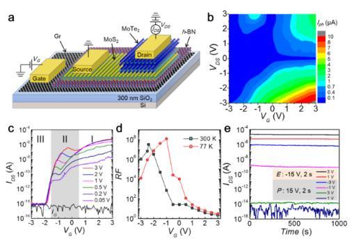 范德华异质结平台研究新型电子和光电子器件性质