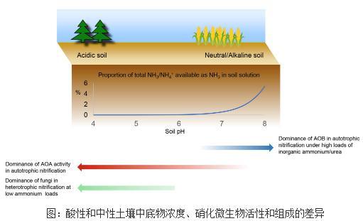 酸性土壤中硝化作用和硝化微生物研究进展