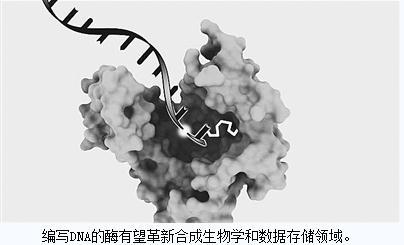 模拟人体复制自身DNA方式的新技术让一天组建一个新基因将成现实