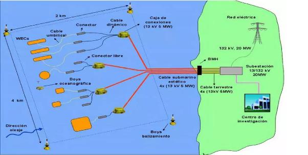 有意义!西班牙研究深海漂浮式风电对鸟类影响