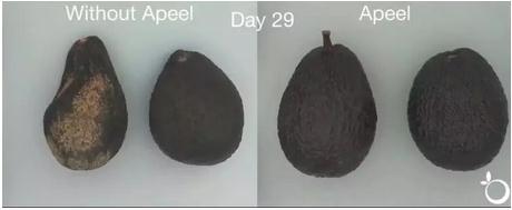 由废弃植物材料制成的Apeel涂层可保鲜