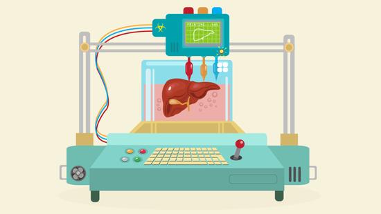 美国Prellis Biologics公司能以特定尺寸和速度制造出3D打印器官
