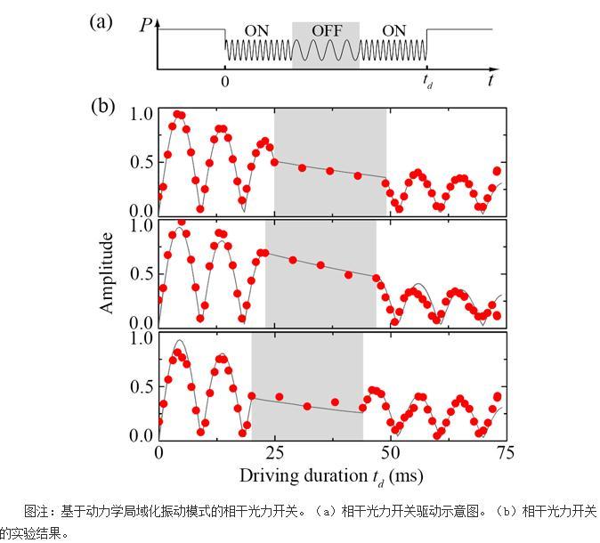 首次构造基于动力学局域振动模式的相干光力开关