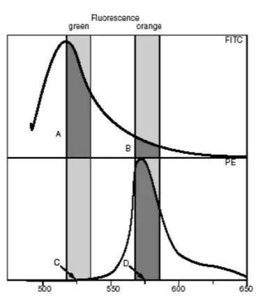 流式细胞仪荧光补偿调节方法
