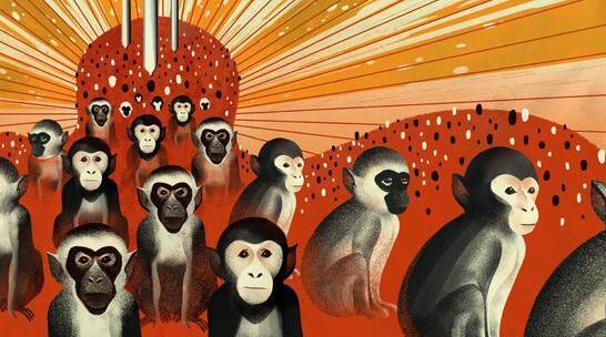 脑科学专家冯国平——研究Shank3缺陷型猴子自闭症