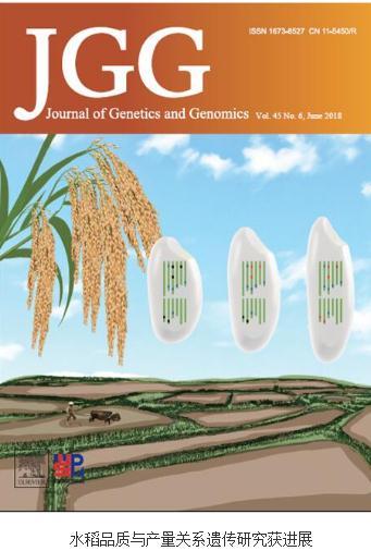 高通量测序的方法:产量与品质相关基因的高密度连锁图谱