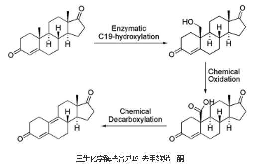 甾体药物:三步化学酶法合成19-去甲雄烯二酮