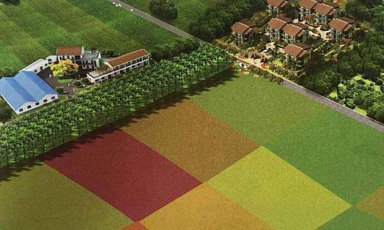 共享农庄的优势与试点建设原则