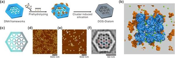 二氧化硅固态纳米结构的制备:一种框架核酸诱导的团簇预水解策略
