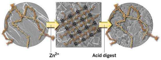 新型聚合物能在刚性和柔性两种状态间转换