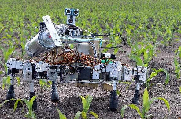 曲靖将打造西南地区最大特种机器人制造基地