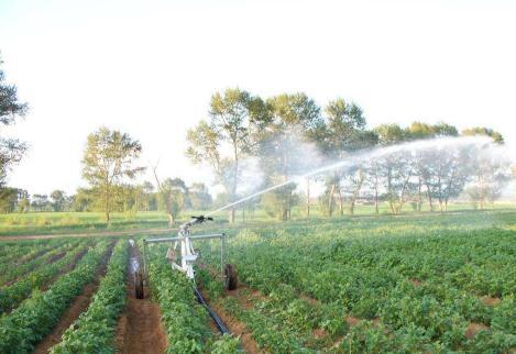 农业灌溉加剧了气候变化的影响
