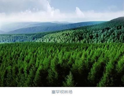 塞罕坝林场达成首笔碳汇交易