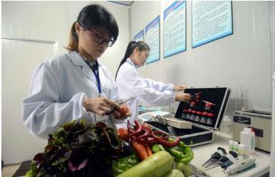 利用大数据实现农药残留检测信息化