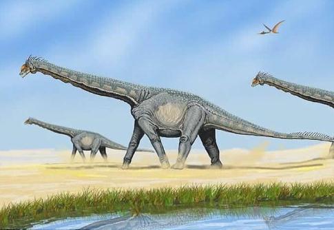 贵州省茅台镇发现我国最大规模的侏罗纪早期蜥脚类足迹群