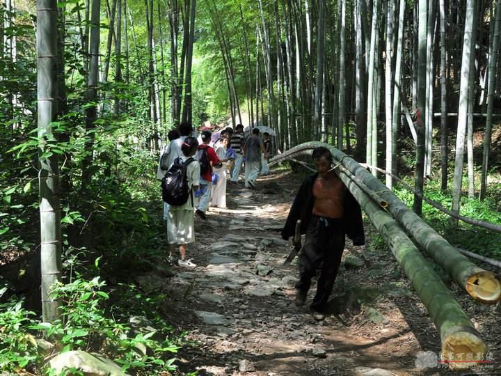 管道运送毛竹下山新技术,颠覆毛竹下山的传统作业方式