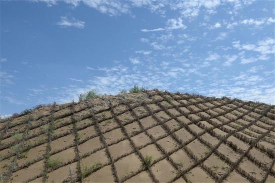 """""""低覆盖度治沙""""理论原则:治沙不等于让所有的沙漠都变成绿洲!"""