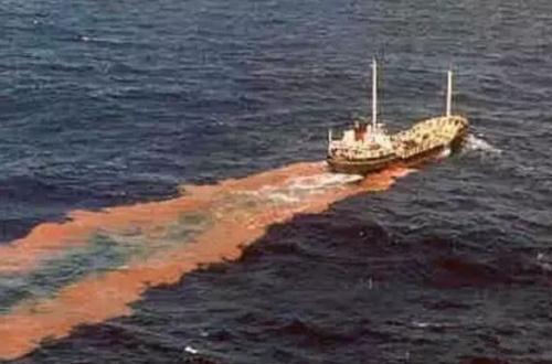 万征和陈继红团队:评述油轮溢油事故