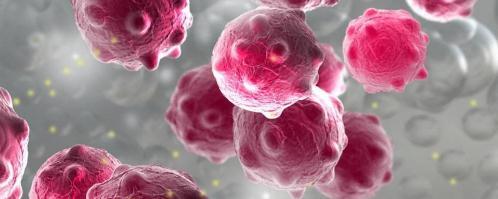 基于荧光素酶的成像技术首次观察到肿瘤转移过程