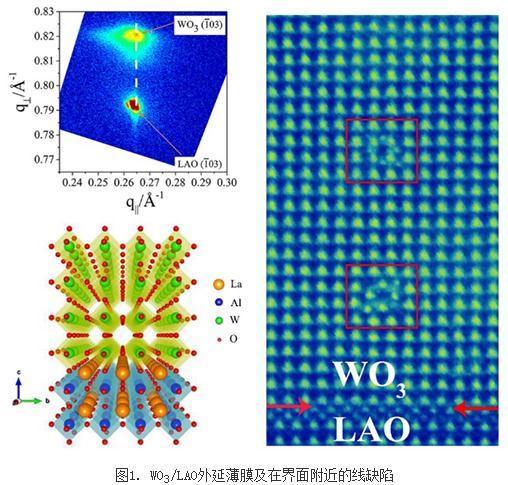 离子液体调控WO3相变及神经形态器件研究进展