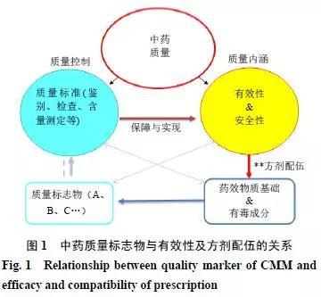 基于中医方证代谢组学的中药质量标志物发现研究