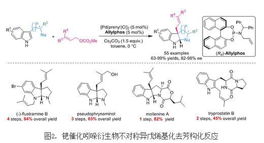 钯催化的吲哚衍生物不对称异戊烯基化去芳构化反应