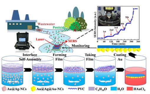 一种基于柔性、透光SERS基底的快速原位检测不规则物体表面污染物的方法