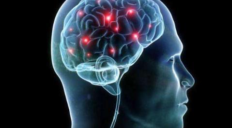 探讨神经科学独特的伦理、法律和政策挑战
