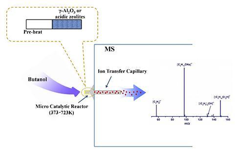 醇类脱水异相催化反应中产生的短寿命阳离子质谱检测研究进展
