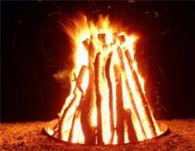 欧盟将木材作为低碳可再生燃料推广使用引发质疑