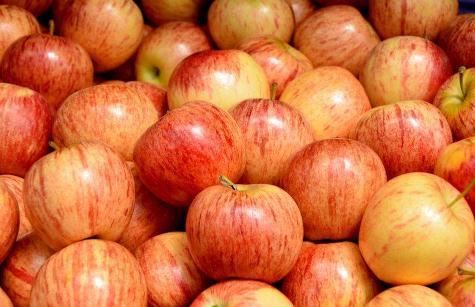 花青苷:苹果着色机理研究进展